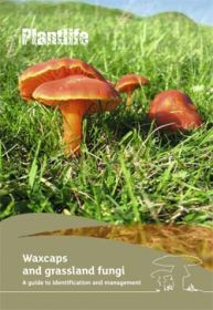 Waxcap-ID-guide-cover.jpg