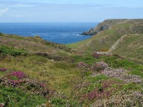 Kynance Cove (c) Matteosoldati under Creative Commons.JPG