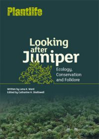 Looking-after-juniper-cover.jpg