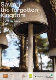 Saving the forgotten kingdom: A strategy for the conservation of the UK's fungi