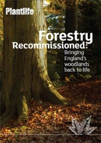 Forestry-recommissioned.jpg