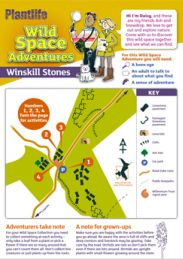 Wild Space Adventures: Winskill Stones