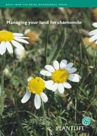 Managing_your_land_for_chamomile.jpg