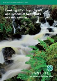 Looking after bryophytes and lichens of Scotland's oceanic ravines