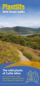 CoilleMhor-Walk-cover.jpg