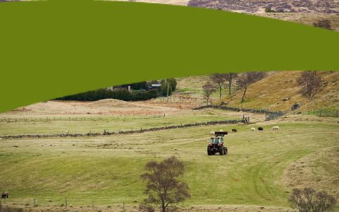 Agriculture in Scotland