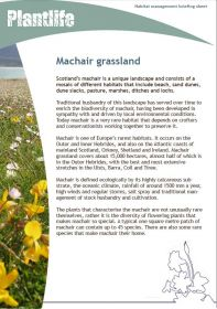Cover-Machair.jpg