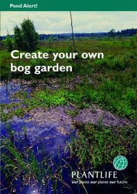 Create_your_own_bog_garden.jpg