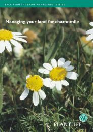 Managing your land for chamomile